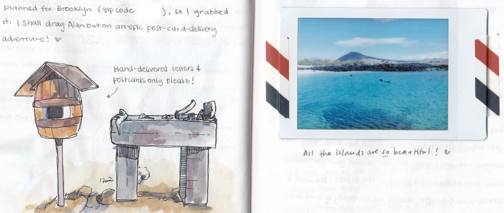 Documenting Adventures: Christmas in the Galapagos